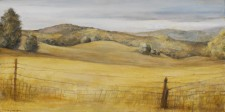 Sonoma Fields, 12¨ x 24¨, oil on canvas