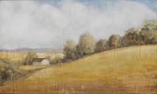 Rural Hillside*, 11¨ x 18¨, oil on canvas