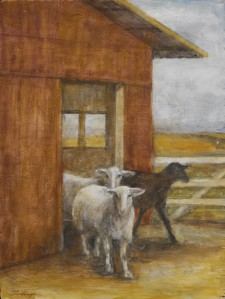 Sheep, 12¨ x 15¨, oil on wood