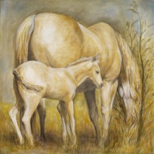 Palomino Mare and Foal , 24¨ x 24¨, oil on canvas