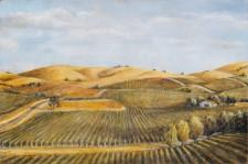 "Sonoma Vineyard, oil on canvas, 24""x30"""