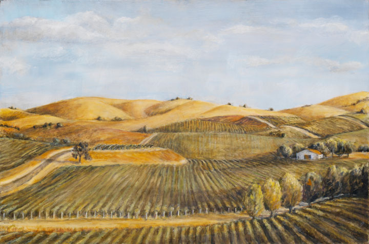 "Sonoma Vineyard, oil on canvas, 24""x30"""