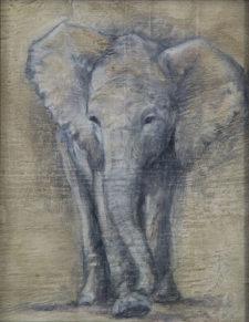 "Little Elephant, oil on wood, 5""x7"""