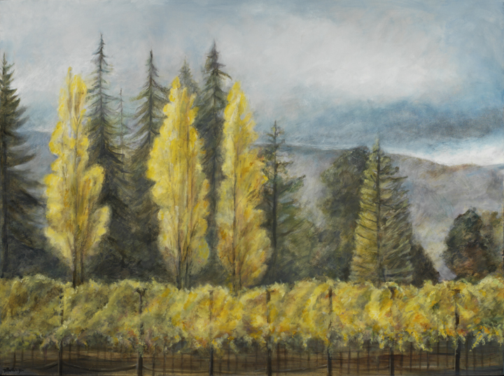 Vineyard in Fall, 36¨ x 48¨, oil on canvas,