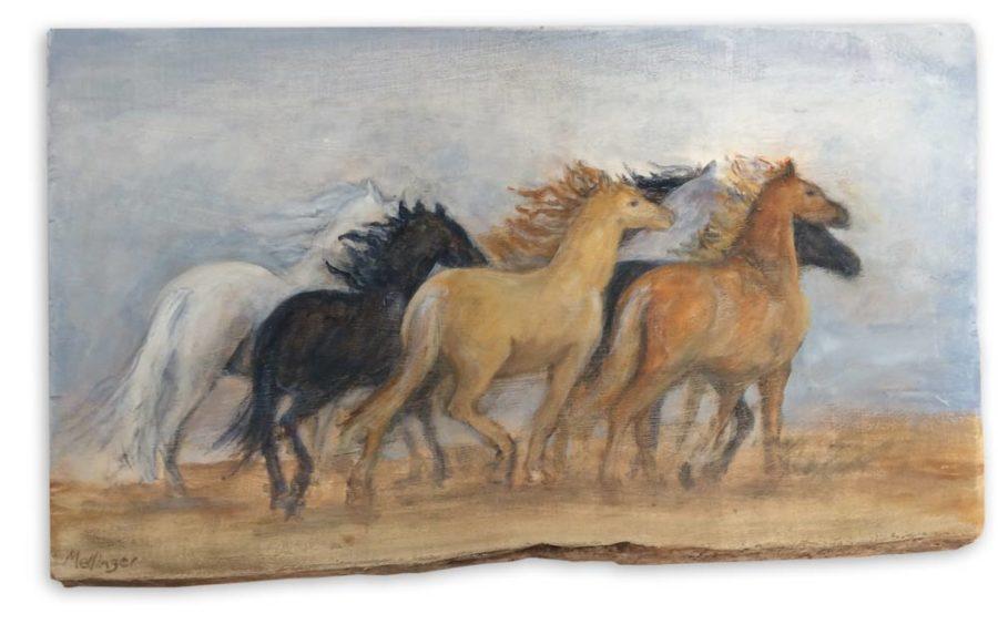 Stampede - 9 x 16, oil on reclaimed wood